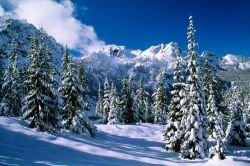 Живописные зимние пейзажи (фото)