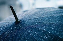 Какой день недели самый дождливый