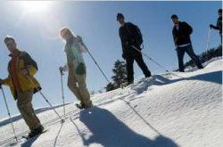 Лыжные курорты подорожали на 25%. Дороже всего — отдых в Канаде