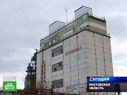 Птичий грипп в Ростовской области - результат диверсии?