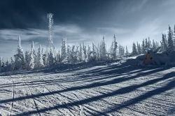 В Западной Сибири построят струнную дорогу