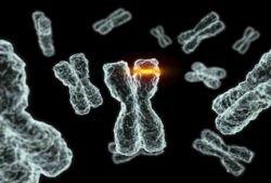 Шизофрения и рак генетически взаимосвязаны