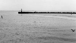Гидрографическое исследование пройдет в Керченском проливе