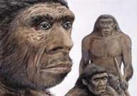Выяснены причины генных мутаций