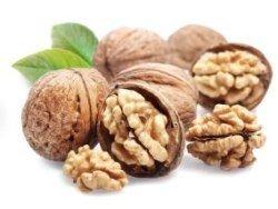 Новость на Newsland: Грецкие орехи могут предотвратить появление болезней