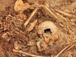 Новость на Newsland: В Перу найдена гробница цариц периода Уари