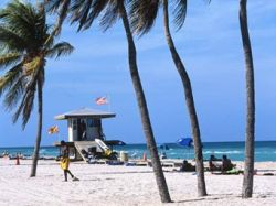 Кубинскую иммигрантку обвинили в многомужии