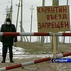 В России вспышка птичьего гриппа