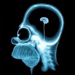 Самые полезные развлечения для головного мозга