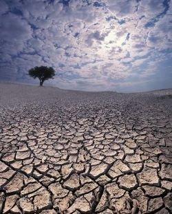 Американцы настаивают: глобальное потепление не связано с деятельностью человека