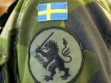 Шведские военные кастрировали льва на своей эмблеме