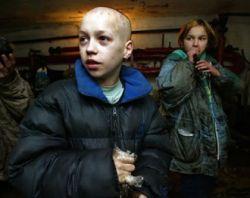 Москва потратила на бродячих собак на 27 млн рублей больше, чем на бездомных детей