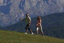 Спортзал и диету можно заменить 2-километровой прогулкой