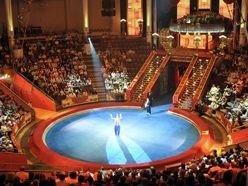 Новость на Newsland: В Грозном планируют возродить цирковое искусство