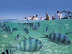 Новость на Newsland: С 29 июля россияне смогут ездить на Фиджи без виз