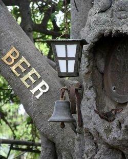 Необычный бар в баобабе (фото)