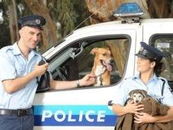 В Тель-Авиве появилась полиция для защиты животных