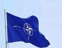 Украина согласилась на все формы сотрудничества с НАТО