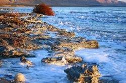 На Мертвом море состоялся необычный Фестиваль соляных скульптур