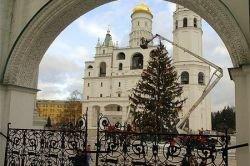 В Москве установили главную елку страны (фото)