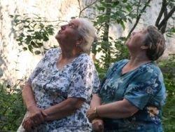 Новость на Newsland: Чиновники задумались о повышении пенсионного возраста для женщин