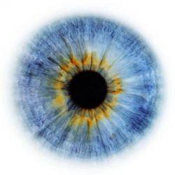 Eyescapes — пейзажи из глаз от Rankin (фото)