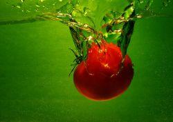 Израильские ученые вывели помидоры, помогающие от бесплодия