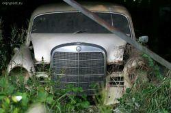 Автомобильное кладбище в лесах Швецарии (фото)