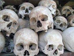 Было видно, что черепа специально обработаны и упакованы для длительного хранения.  На.