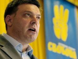 Украина: американский посол взялся за воспитание Тягнибока