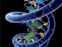 Новость на Newsland: В США произошла утечка бактериологического оружия