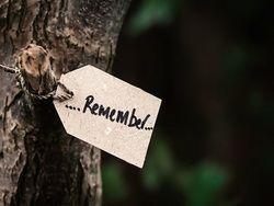 10 эффективных способов улучшить свою память