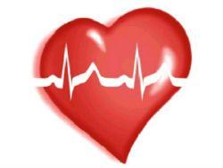 Новость на Newsland: Загрязнение воздуха наращивает риск сердечных болезней