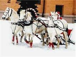 Российский Дед Мороз отправился в предновогоднее путешествие