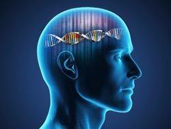 Новость на Newsland: Ретротранспозоны LINE-1 способствуют развитию шизофрении