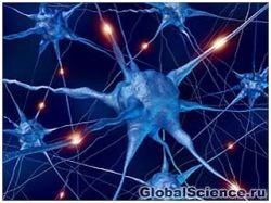 Новость на Newsland: Подавленные мозги наименее пластичны