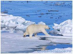 Выяснены причины таяния арктических льдов