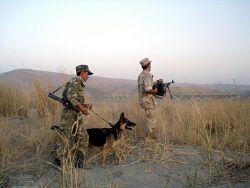 Кто дирижирует из закулисья таджикско-кыргызским спором
