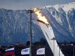 Опрос: в победу России на Олимпиаде в Сочи верит 51% россиян