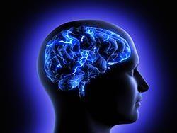 Обнаружен нейронный код отвечающий за пространство