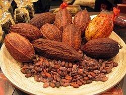 Новость на Newsland: Постоянное потребление какао сохранит память и в старости