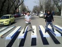 Студенты Бишкека создали новую 3D-зебру