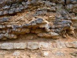 """""""Неуместный артефакт"""": древним орудиям 300 млн лет?"""