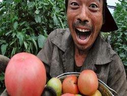 Новость на Newsland: Китайцы травят Кубань?