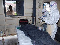 Новость на Newsland: Эксперт: лихорадка Эбола не грозит России