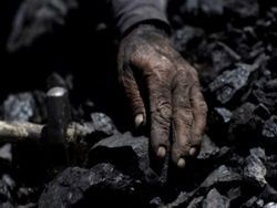 Новость на Newsland: Яценюка поймали на угольных откатах
