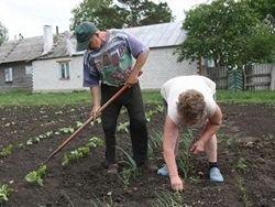 Новость на Newsland: Банки сворачивают кредитование фермеров