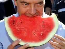 Медведев уверен, что Россия прокормит себя сама