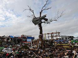 Новость на Newsland: Филиппинка нашла пропавшую год назад во время тайфуна собаку