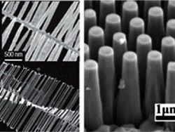 Пережить зиму предложили с помощью согревающих наночастиц